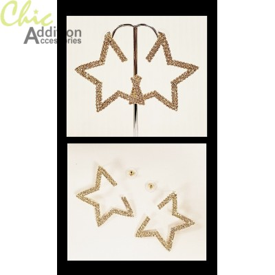 Earrings ER19-0443G